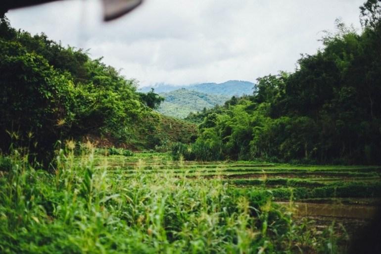 Togo / La Quinzaine de l'Environnement et du Développement Durable (QEDD), c'est du 16 au 30 octobre