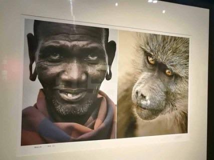 Un musée comparant les noirs aux animaux ouvre en Chine