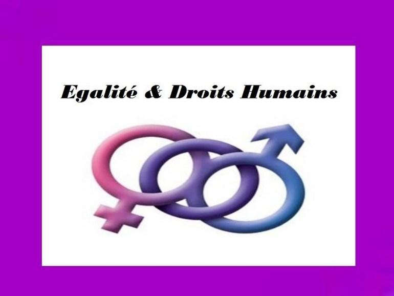 Togo / « Genre, sexe et égalité », lumière sera faite sur ces concepts lors au prochain forum mensuel de discussions-genre