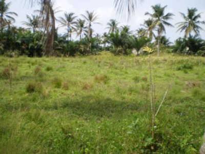Togo, Litige foncier : Akato-Avoemé au bord de l'implosion…
