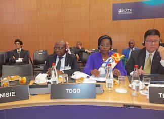 Le Togo a pris part à la réunion du comité directeur de l'OCDE