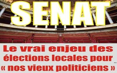 Le Sénat, le vrai enjeu des élections locales pour « nos vieux politiciens »