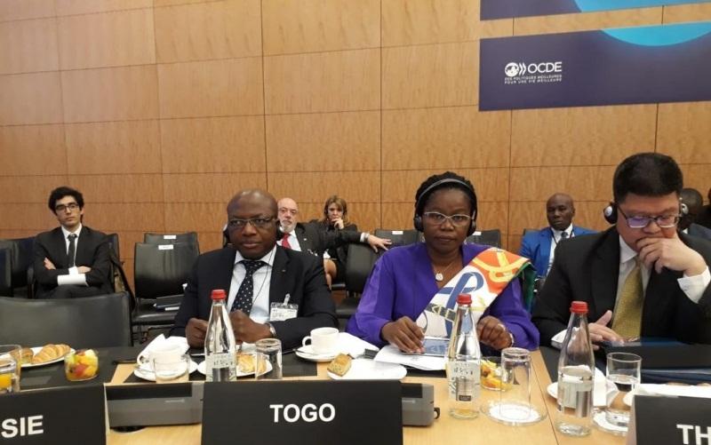5e réunion du Comité directeur de l'OCDE : Le Togo prend part aux travaux