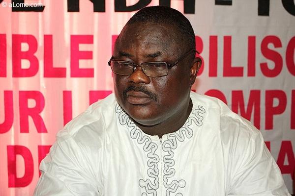 NDH-Togo note une 'cacophonie' dans l'organisation des élections municipales