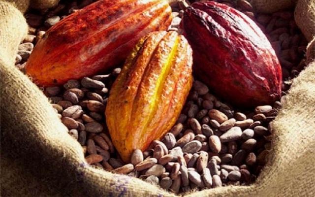 Vers la promotion des bonnes pratiques de commercialisation dans le secteur café-cacao