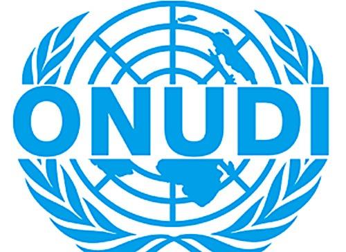 Un appui attendu de l'ONUDI pour soutenir la relance économique