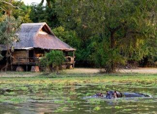 Le tourisme domestique et de proximité, une solution face au Covid-19