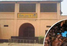 prison civile de lome un centre d extermination