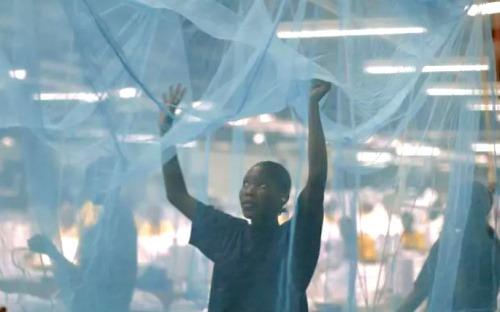 Campagne nationale de distribution de moustiquaires imprégnées