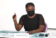 Vers une relance de la coopération décentralisée entre le Togo et la France