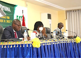 Les Etats Généraux de l'ECO se déroulent à Lomé