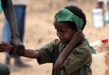 Travail forcé des enfants dans le monde