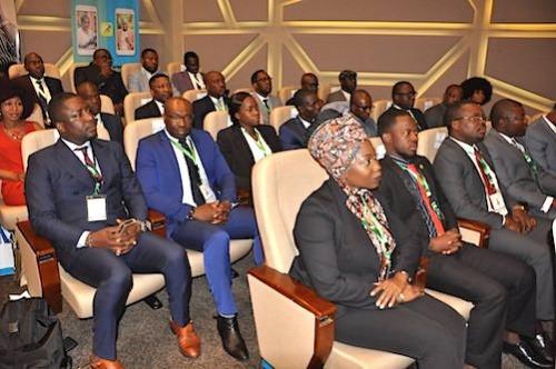 Le Togo lance un agenda estival pour sa diaspora