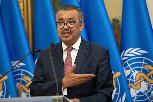 Le Togo abrite la 71ème session du Comité régional de l'OMS pour l'Afrique